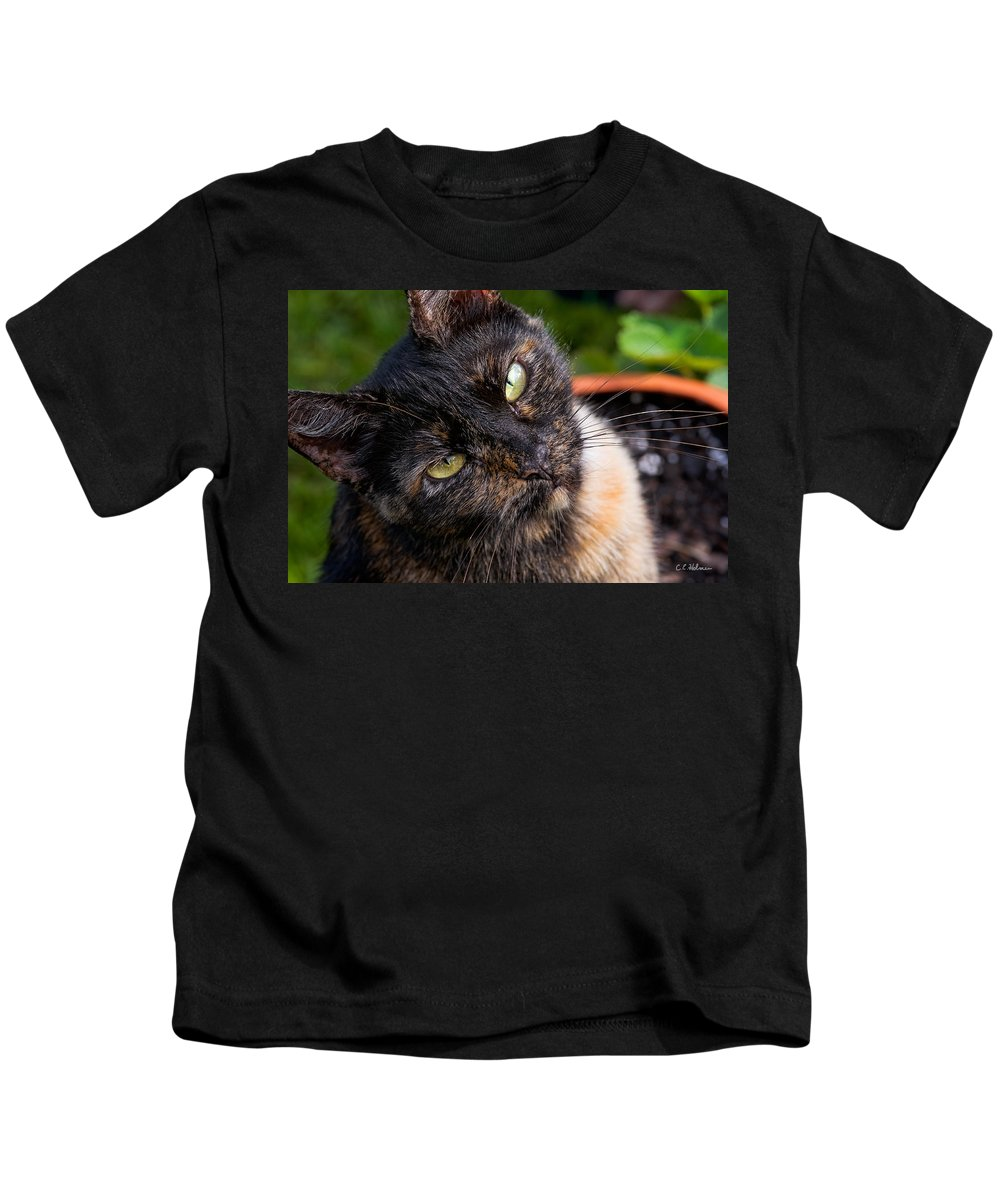 Cat Kids T-Shirt featuring the photograph Little Alley by Christopher Holmes