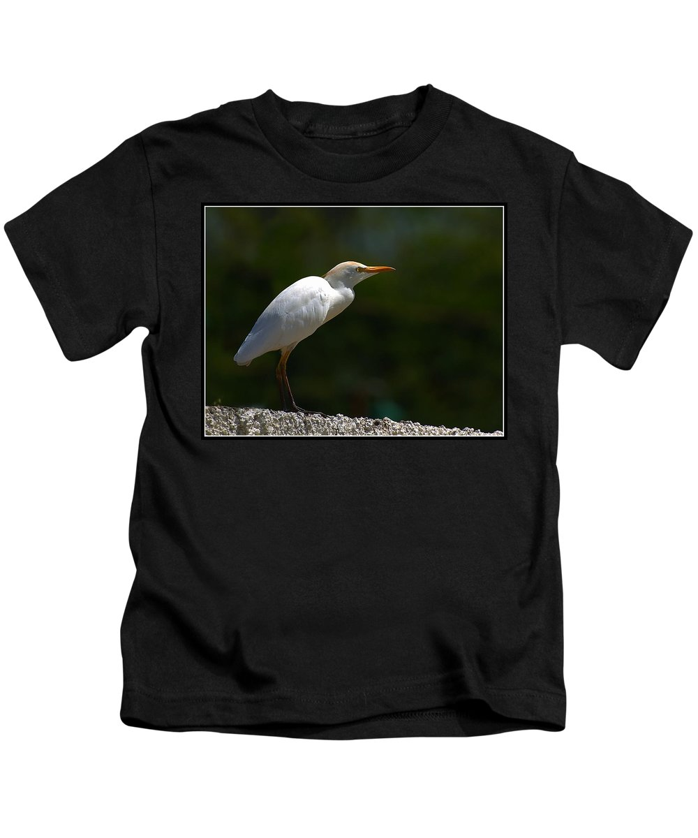 Little Kids T-Shirt featuring the photograph Little White Heron by Galeria Trompiz