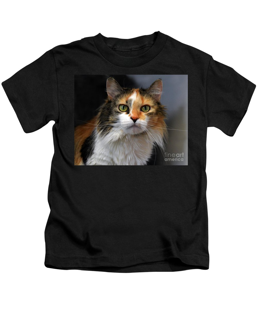 Calico Cat Kids T-Shirt featuring the photograph Long Haired Calico Cat by Catherine Sherman