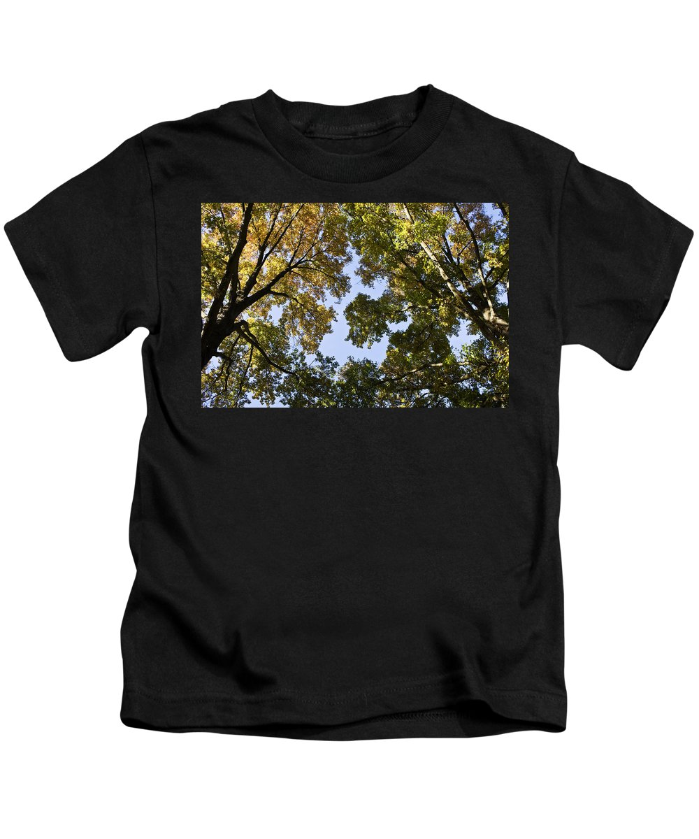 Fall Kids T-Shirt featuring the photograph Look Up by Teresa Mucha
