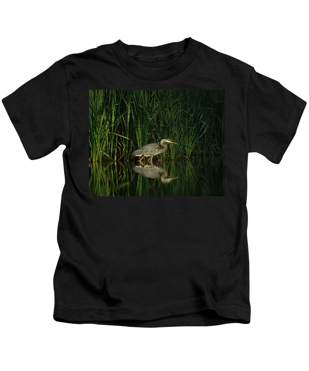 Animals Kids T-Shirt featuring the photograph Looking For Breakfast by Ernie Echols