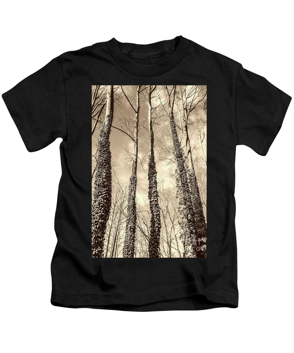 Trees Kids T-Shirt featuring the photograph Looking Up by Margaret Koc