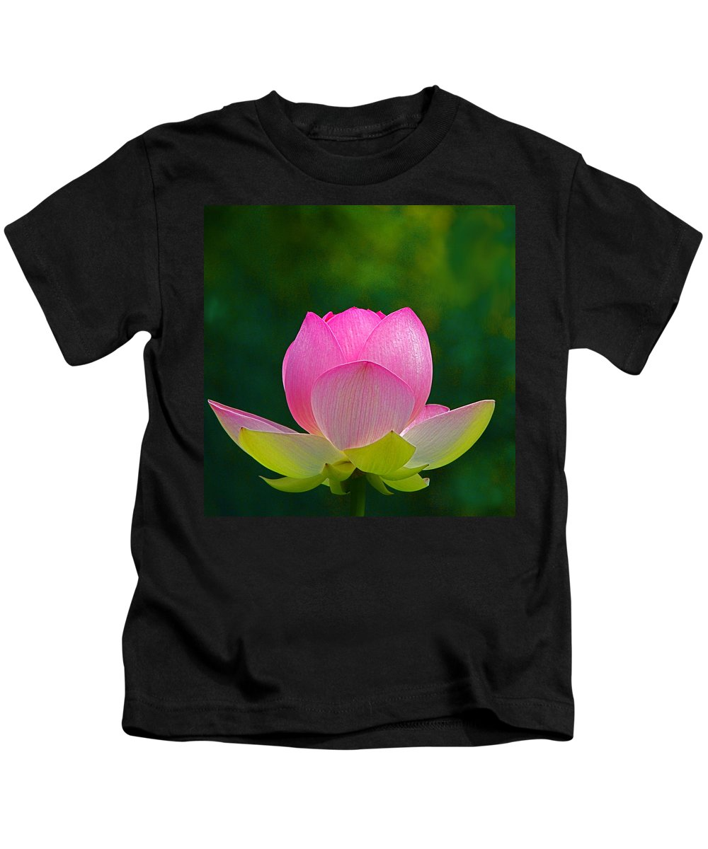 Flower Kids T-Shirt featuring the photograph Lotus Blossom 842010 by Byron Varvarigos