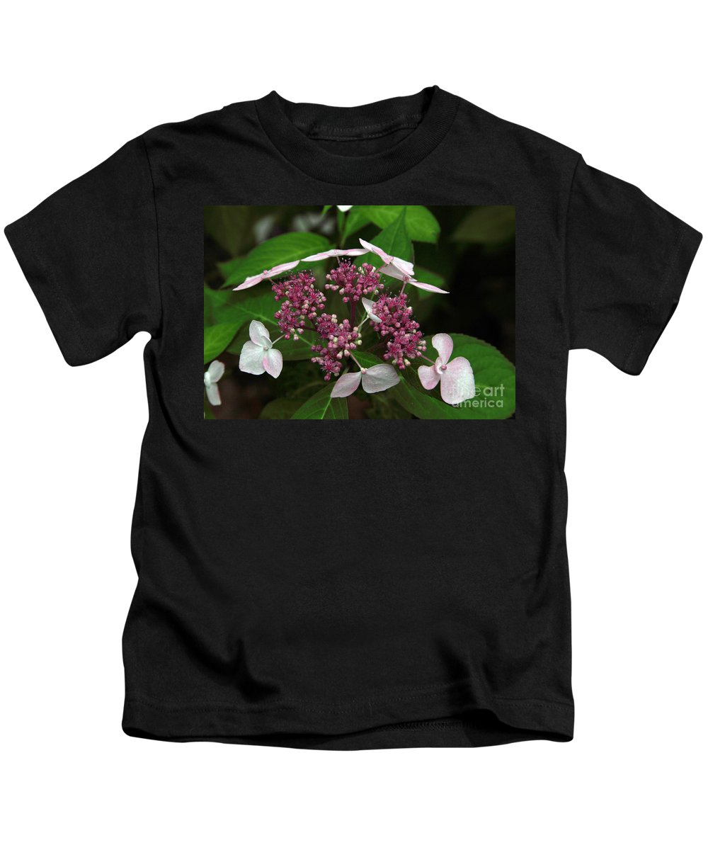 Hydrangea Kids T-Shirt featuring the photograph Lovely by Amanda Barcon