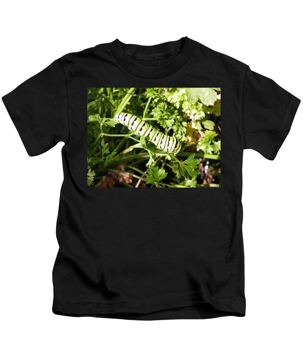 Caterpillar Kids T-Shirt featuring the photograph Lunch In The Garden by Cindy Clements
