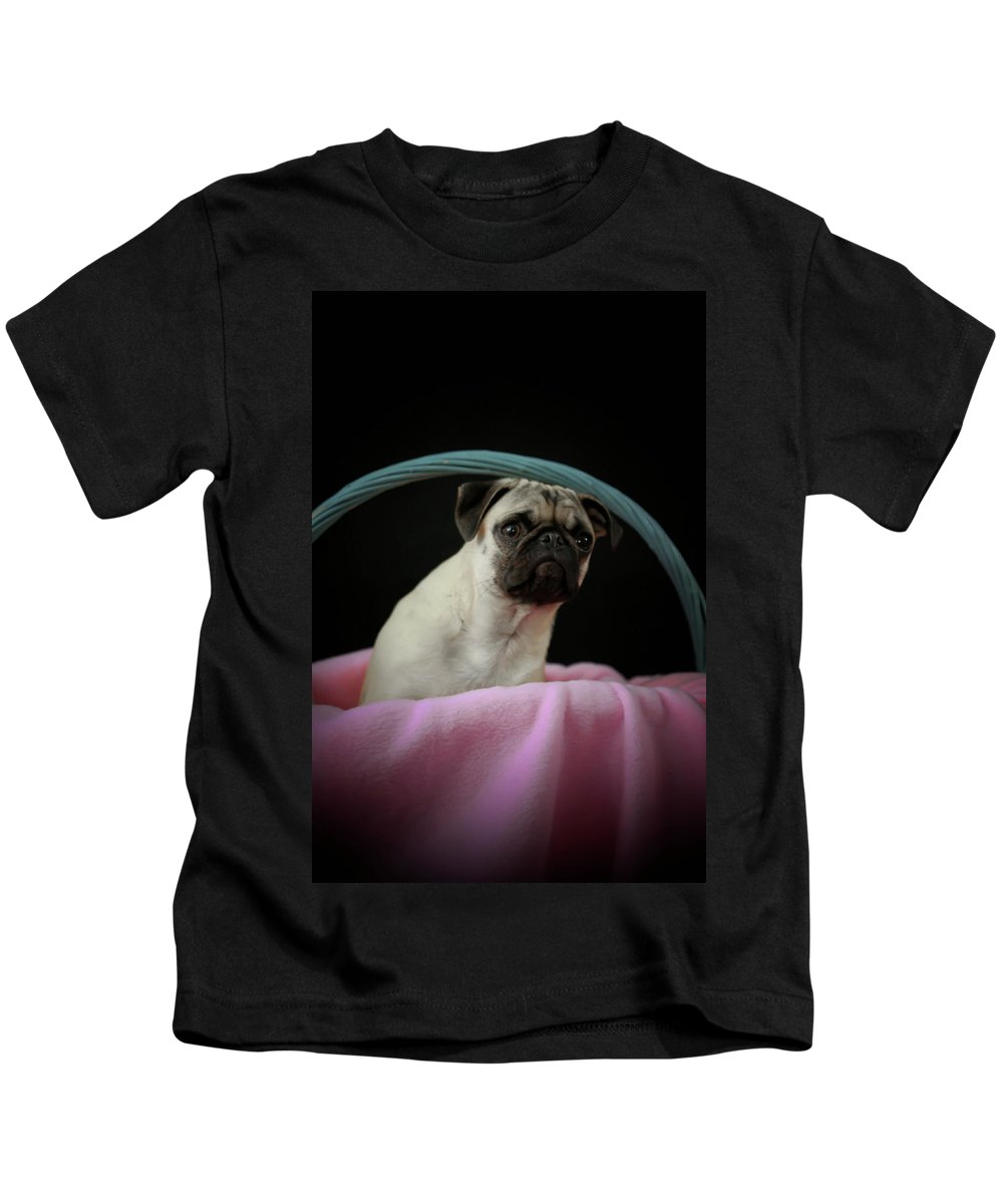 Dog Kids T-Shirt featuring the photograph Maggie In A Basket by Trish Tritz