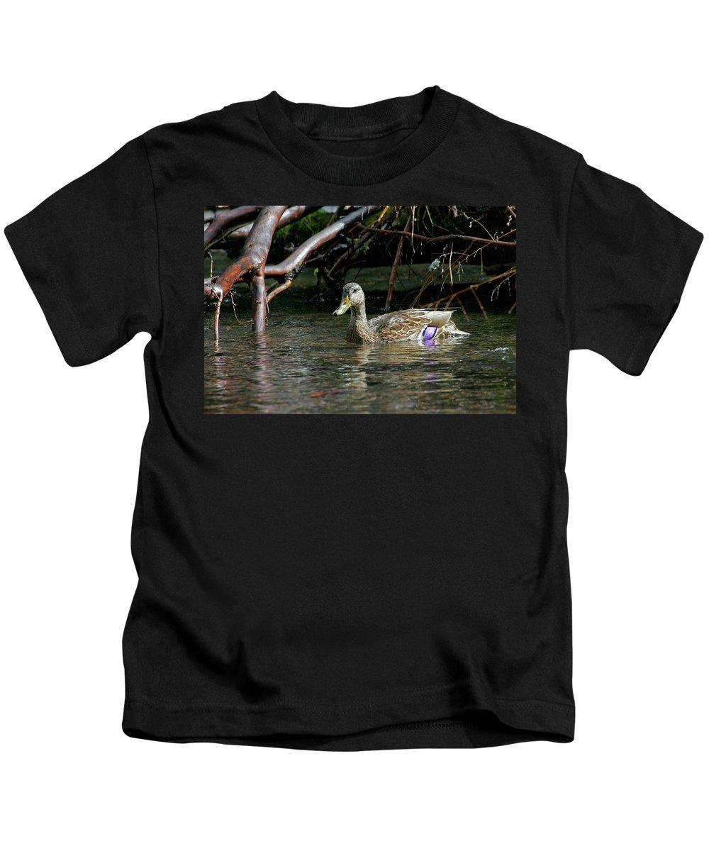 Mallard Female Kids T-Shirt featuring the photograph Mallard Female by Randall Ingalls