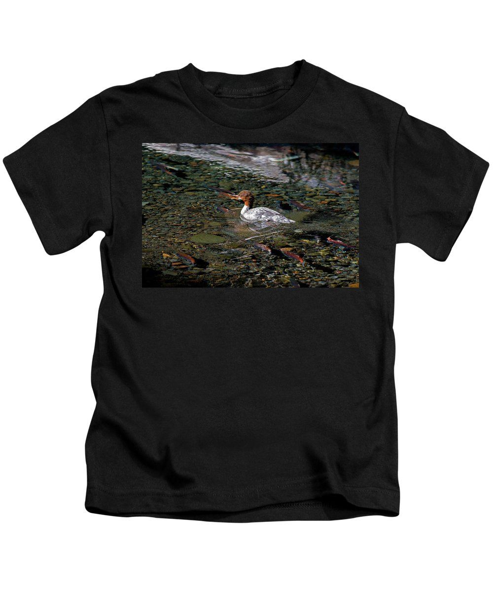 Avian Kids T-Shirt featuring the photograph Merganser And Spawning Salmon - Odell Lake Oregon by Randall Ingalls