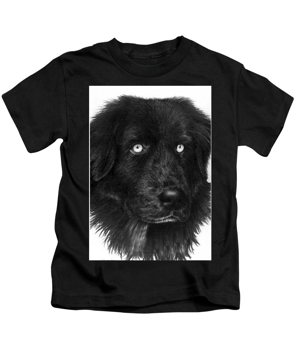 Dog Kids T-Shirt featuring the drawing Merlin by Rachel Christine Nowicki