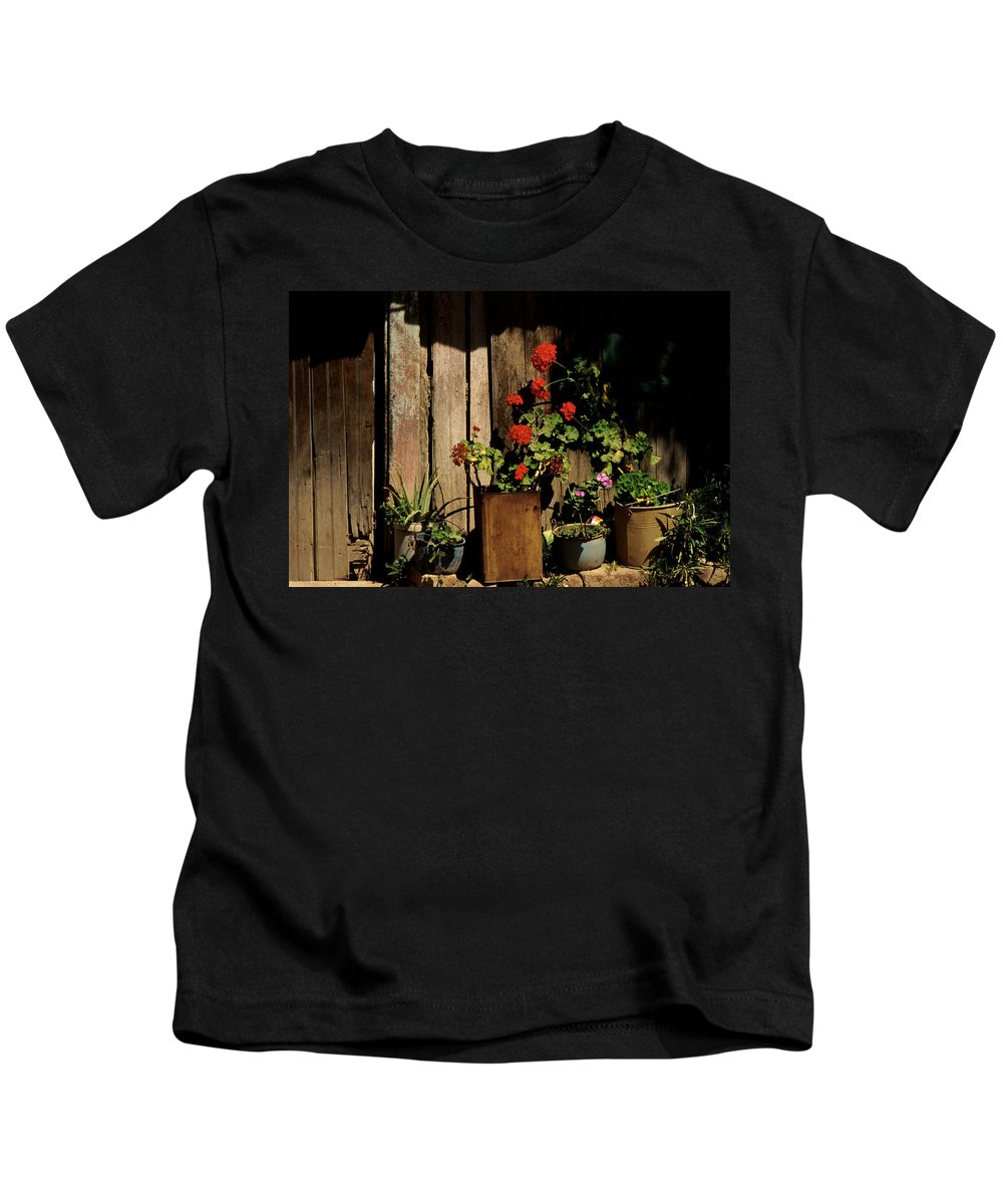 Flowers Kids T-Shirt featuring the photograph Mexican Geraniums by Jerry McElroy