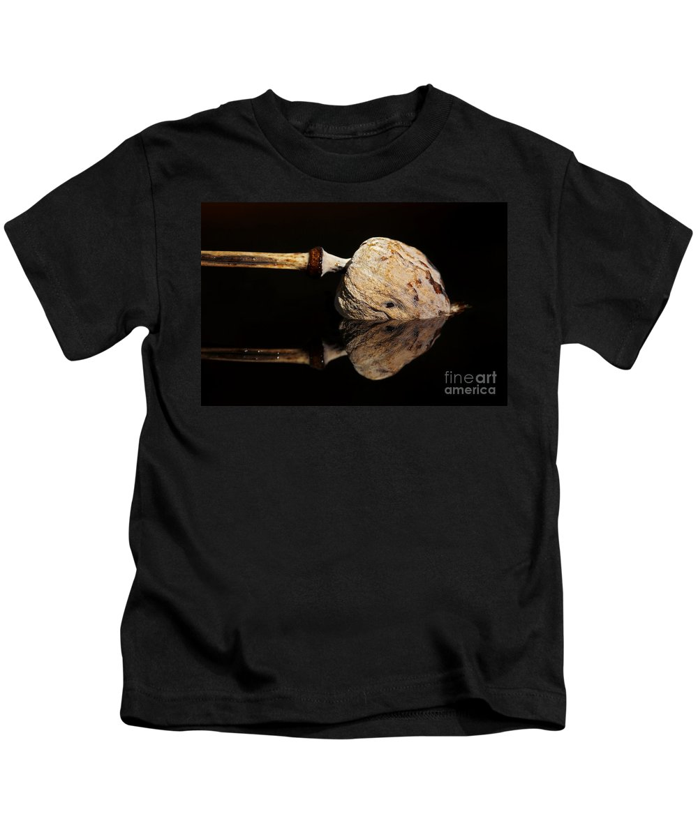 Anacampsis Kids T-Shirt featuring the photograph Mirroring by Michal Boubin