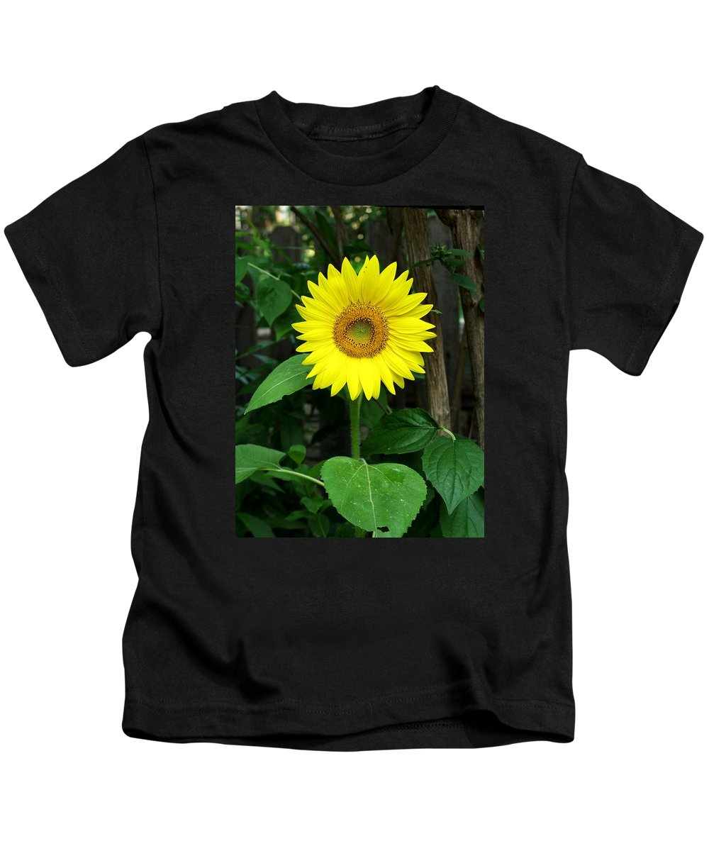 Yellow Kids T-Shirt featuring the photograph Miss Sunshine by Carol Sweetwood