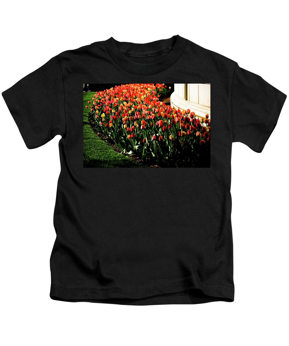 Tulips Kids T-Shirt featuring the photograph Mixed Tulips by Scott Sawyer