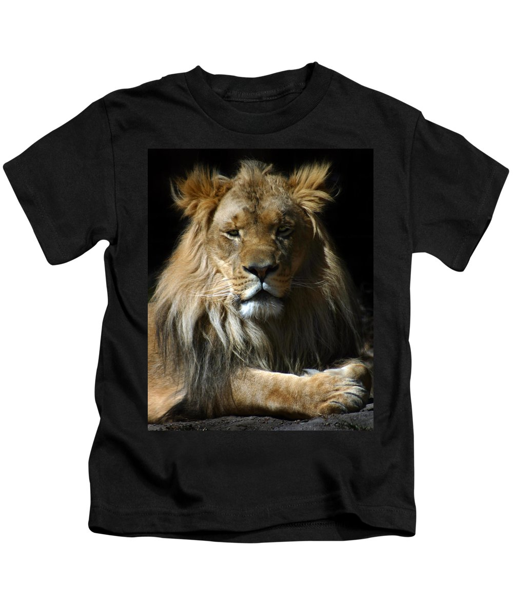 Lion Kids T-Shirt featuring the photograph Mohawk by Anthony Jones