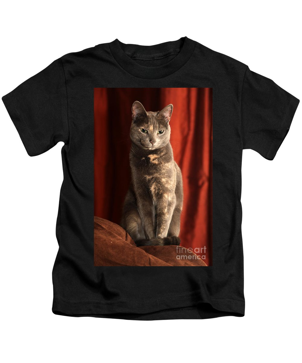 Cat Kids T-Shirt featuring the photograph Mollie by Amanda Barcon