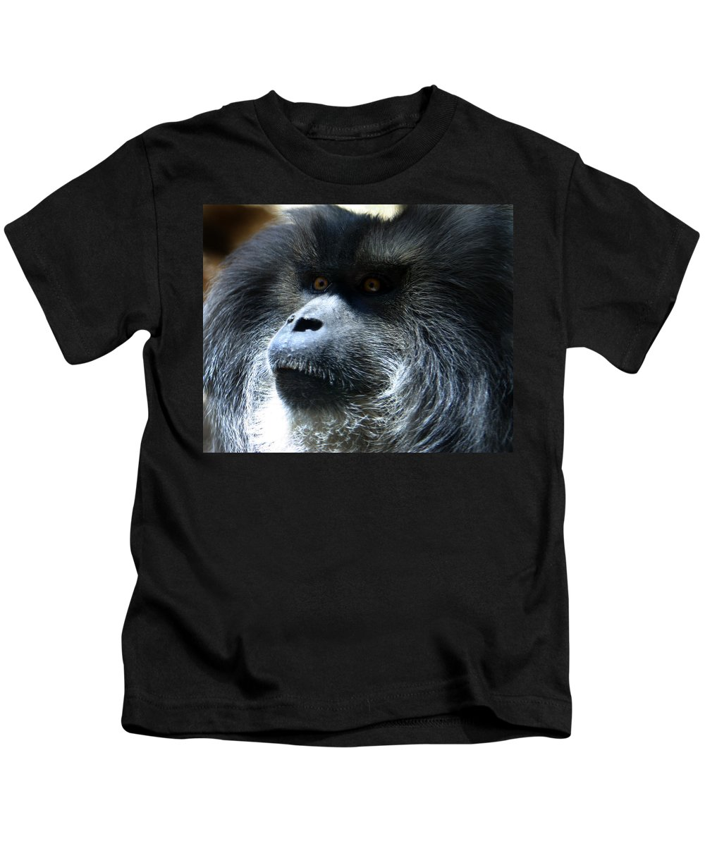 Monkey Kids T-Shirt featuring the photograph Monkey Stare by Anthony Jones