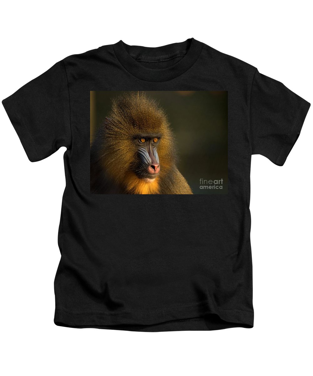 Wildlife Kids T-Shirt featuring the photograph Mother's Finest by Jacky Gerritsen