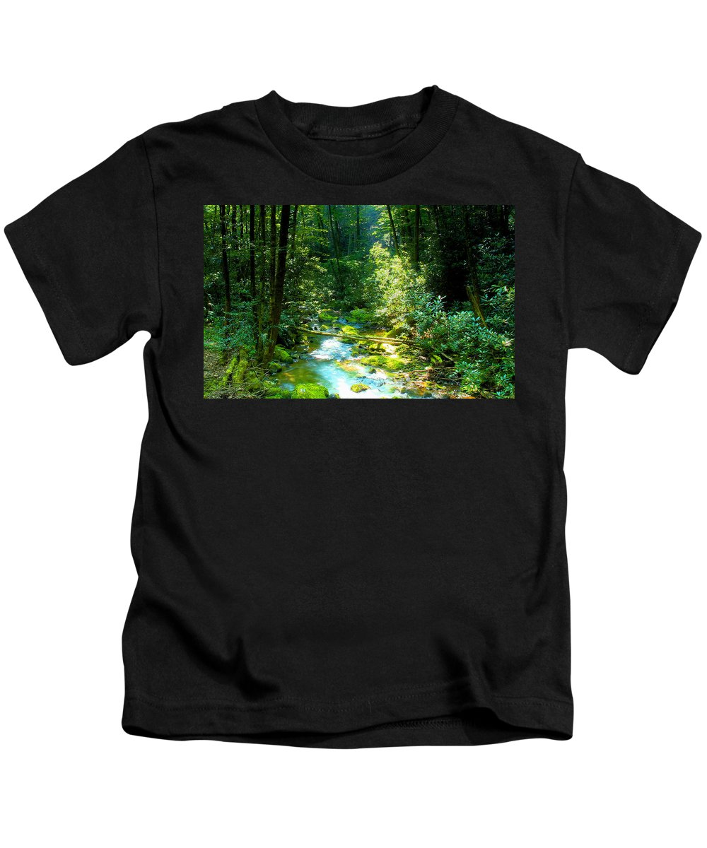 Mountain Stream Kids T-Shirt featuring the painting Mountain Stream by David Lee Thompson