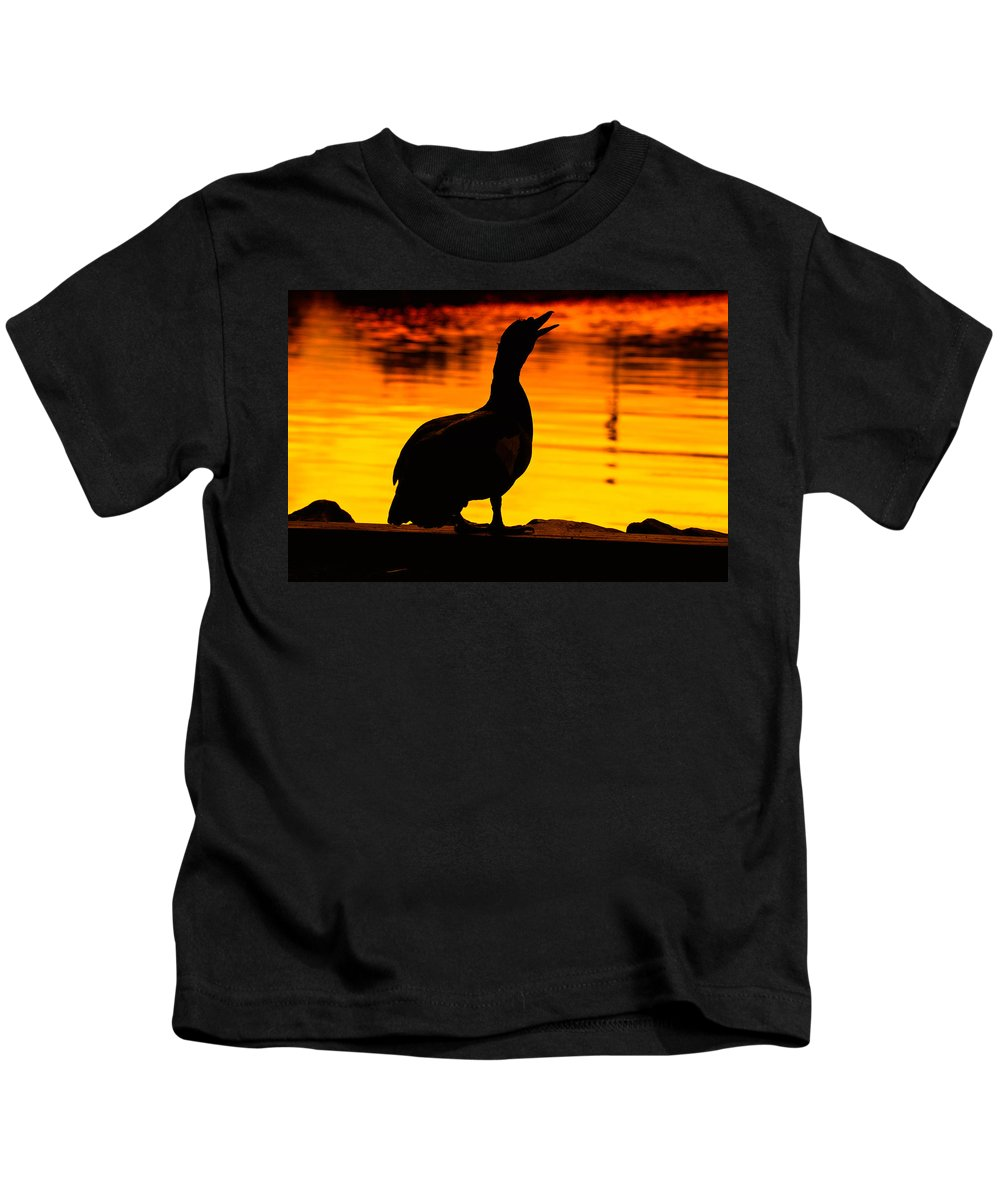 Duck Kids T-Shirt featuring the photograph Muscovy Sunset by Rich Leighton