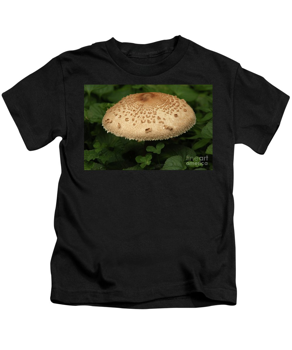 Agaric Kids T-Shirt featuring the photograph Mushroom by Alan Look