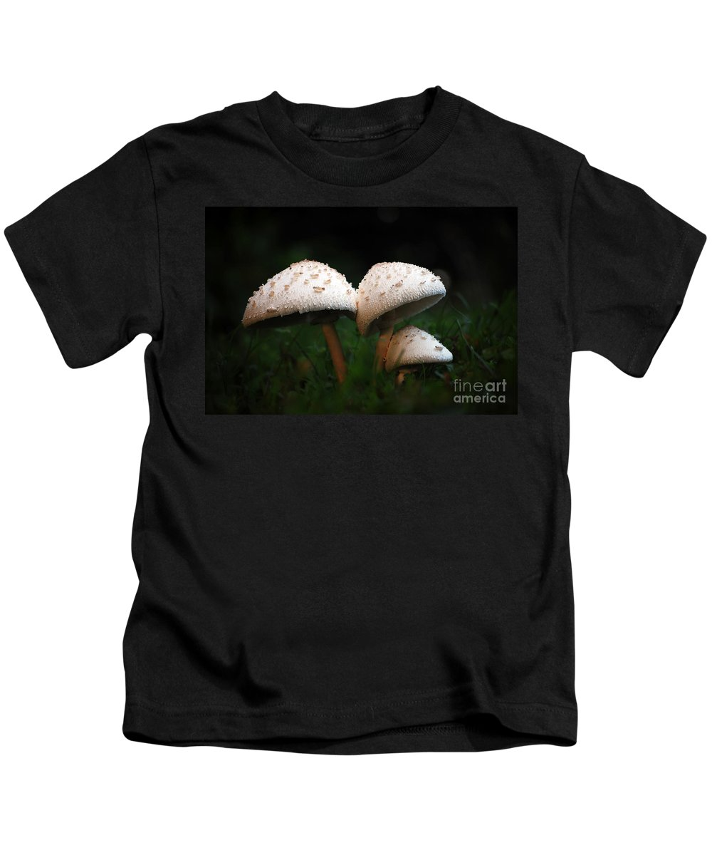 Mushrooms Kids T-Shirt featuring the photograph Mushrooms In The Morning by Robert Meanor