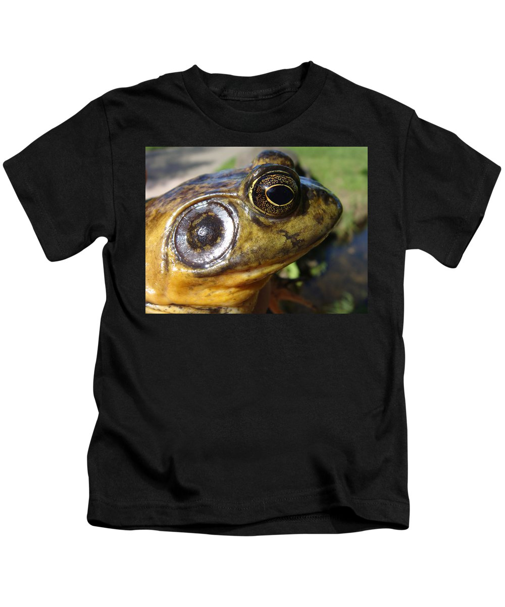 Frog Kids T-Shirt featuring the photograph My What Big Eyes You Have by Donna Blackhall