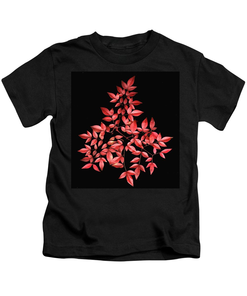 Leaves Kids T-Shirt featuring the photograph Nadina Branch by Wayne Potrafka