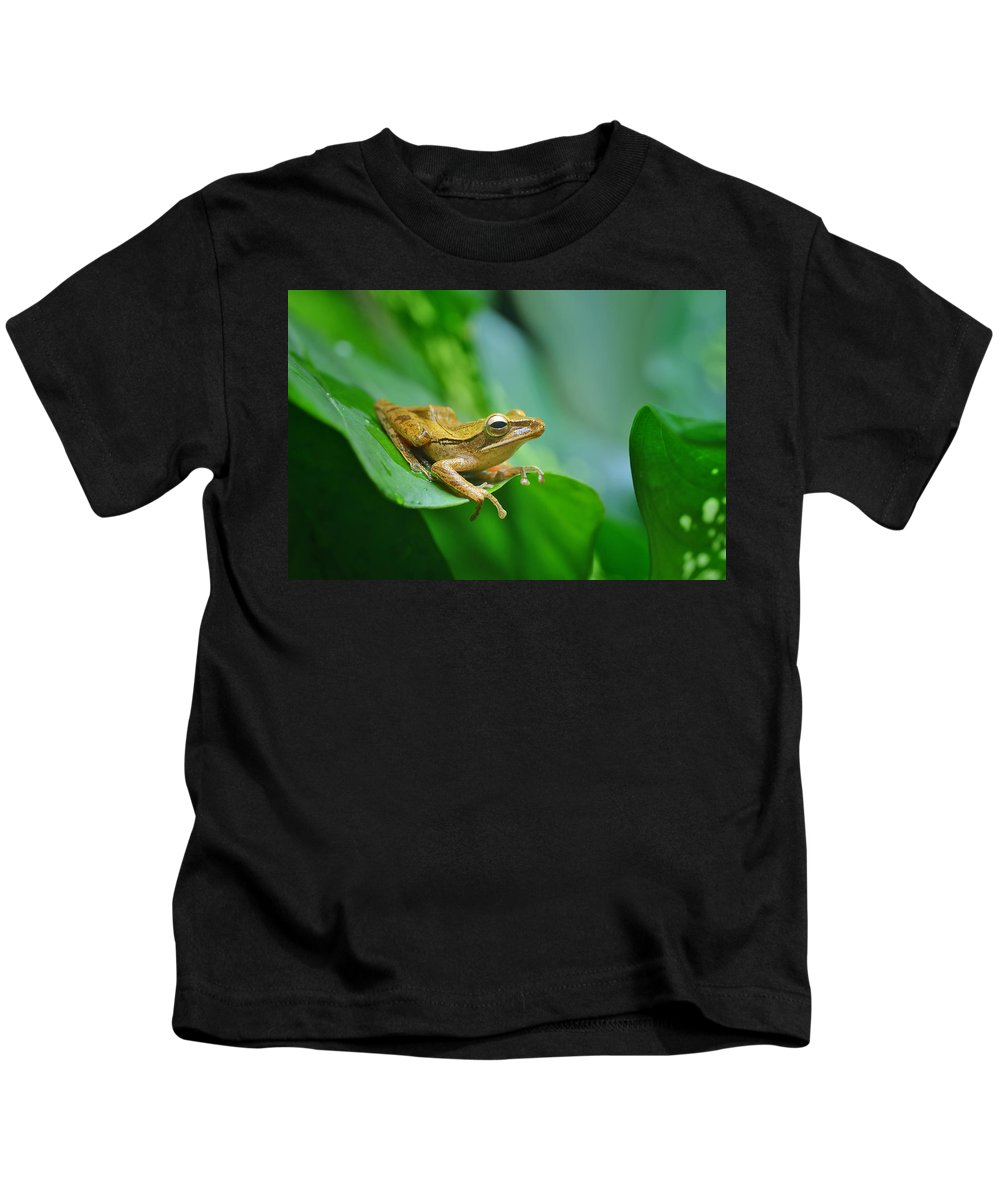 Kids T-Shirt featuring the photograph Nature by Frog