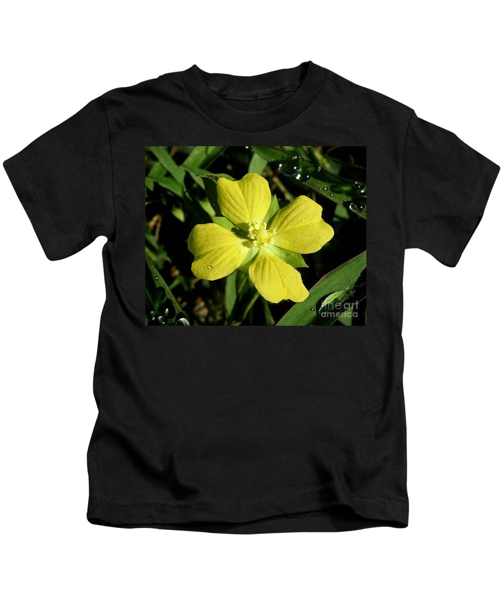 Nature Kids T-Shirt featuring the photograph Nature In The Wild - Kissed By The Sun by Lucyna A M Green