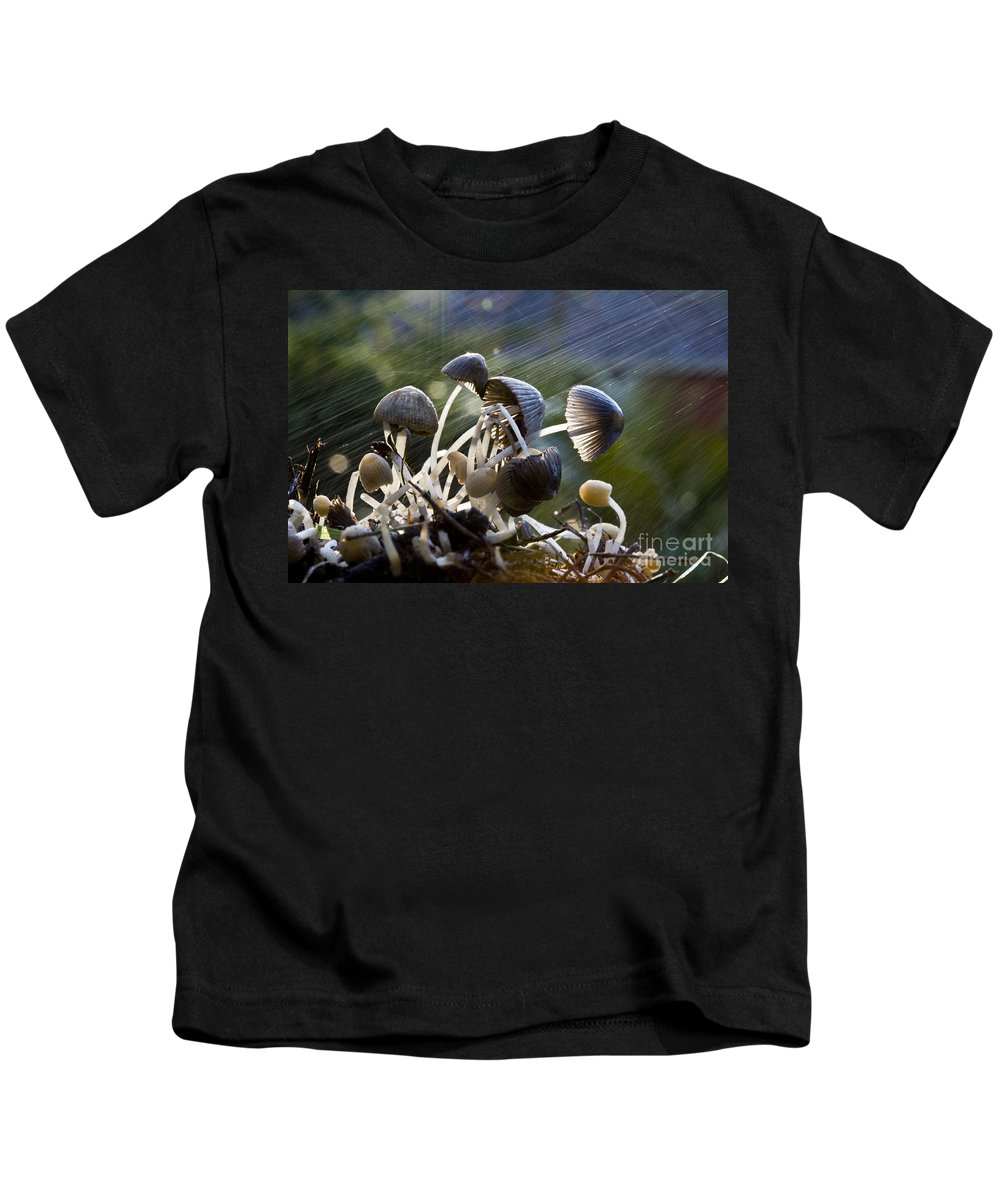 Mushrooms Rain Showers Umbrellas Nature Fungi Kids T-Shirt featuring the photograph Nature by Sheila Smart Fine Art Photography