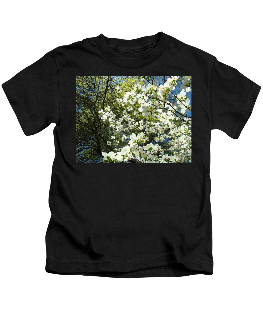 Dogwood Kids T-Shirt featuring the photograph Nature Tree Landscape Art Prints White Dogwood Flowers by Baslee Troutman