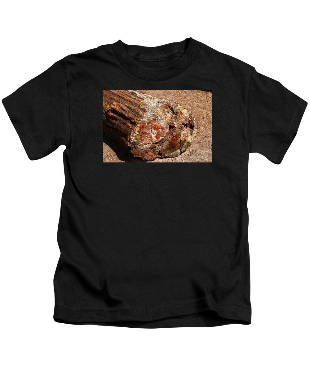 Log Kids T-Shirt featuring the photograph Nature's Texture And Colors by Christiane Schulze Art And Photography