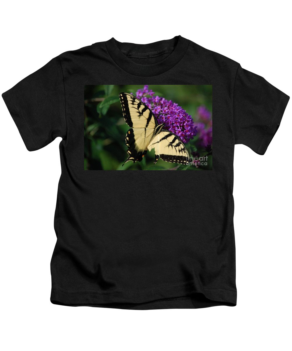 Butterfly Kids T-Shirt featuring the photograph Nothing Is Perfect by Debbi Granruth