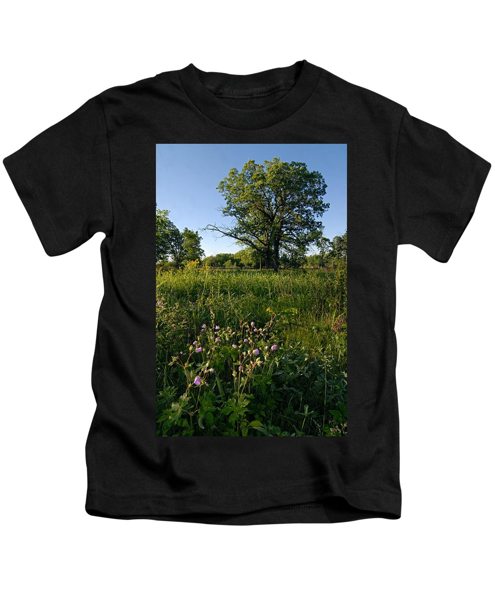 Burr Oak Tree Kids T-Shirt featuring the photograph Oak Savanah by Larry Ricker