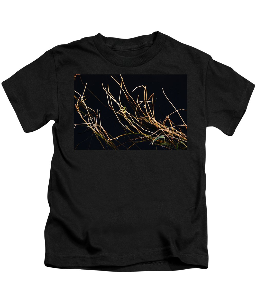 Zen Kids T-Shirt featuring the photograph One Direction by Susanne Van Hulst