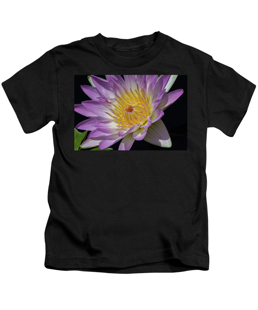 Flower Kids T-Shirt featuring the photograph Opened by Kathy Whitehurst