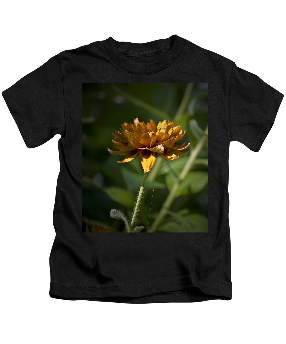 Orange Kids T-Shirt featuring the photograph Orange Blanket Flower by Teresa Mucha