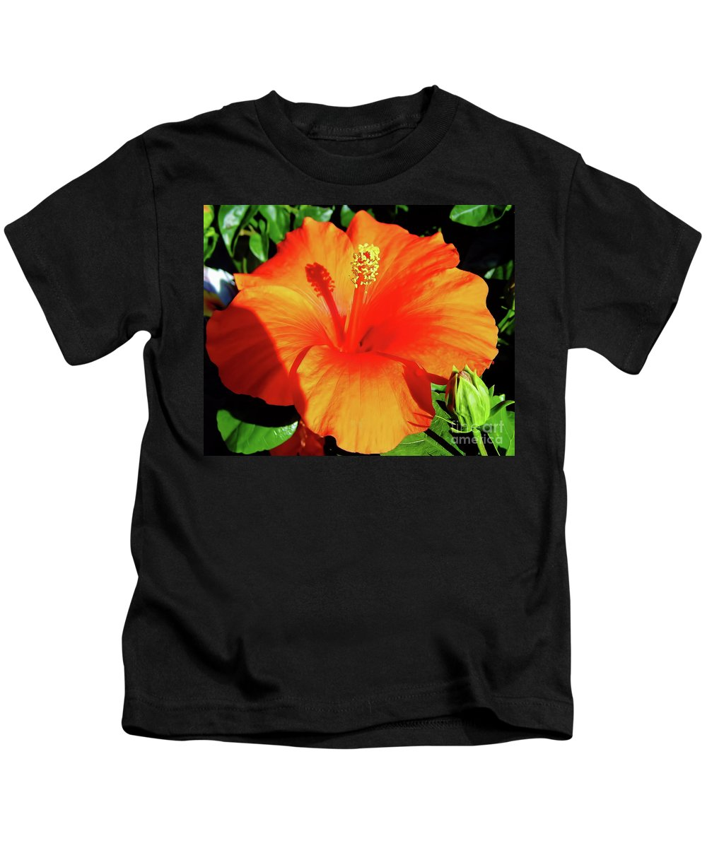 Hibiscus Kids T-Shirt featuring the photograph Orange Hibiscus by D Hackett