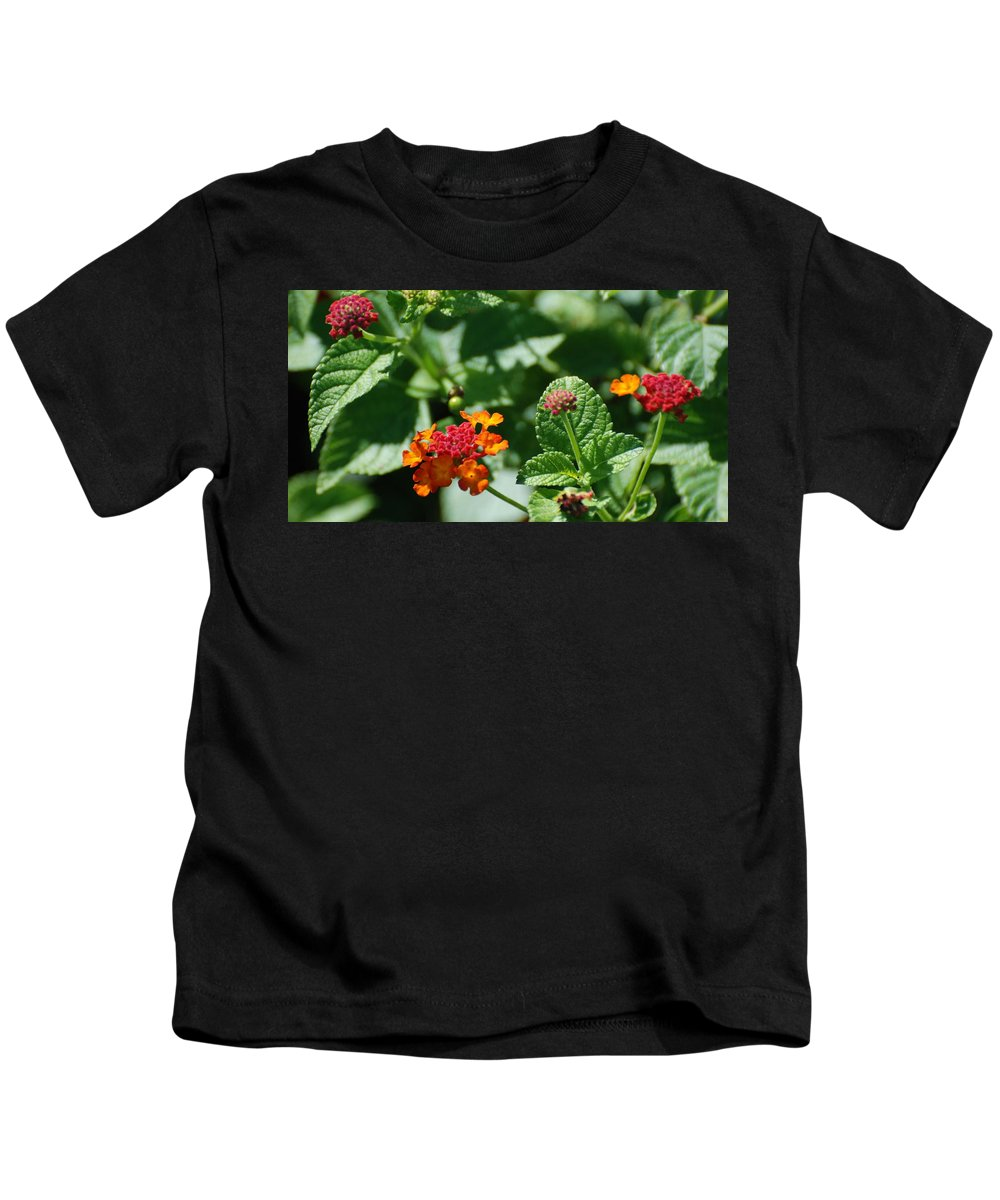 Orange Kids T-Shirt featuring the photograph Orange Red Flowers by Rob Hans