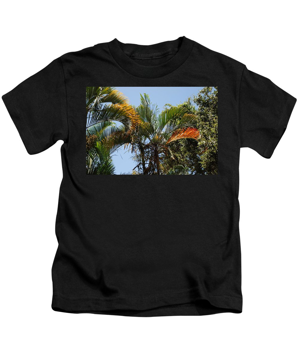 Palms Kids T-Shirt featuring the photograph Orange Trees by Rob Hans