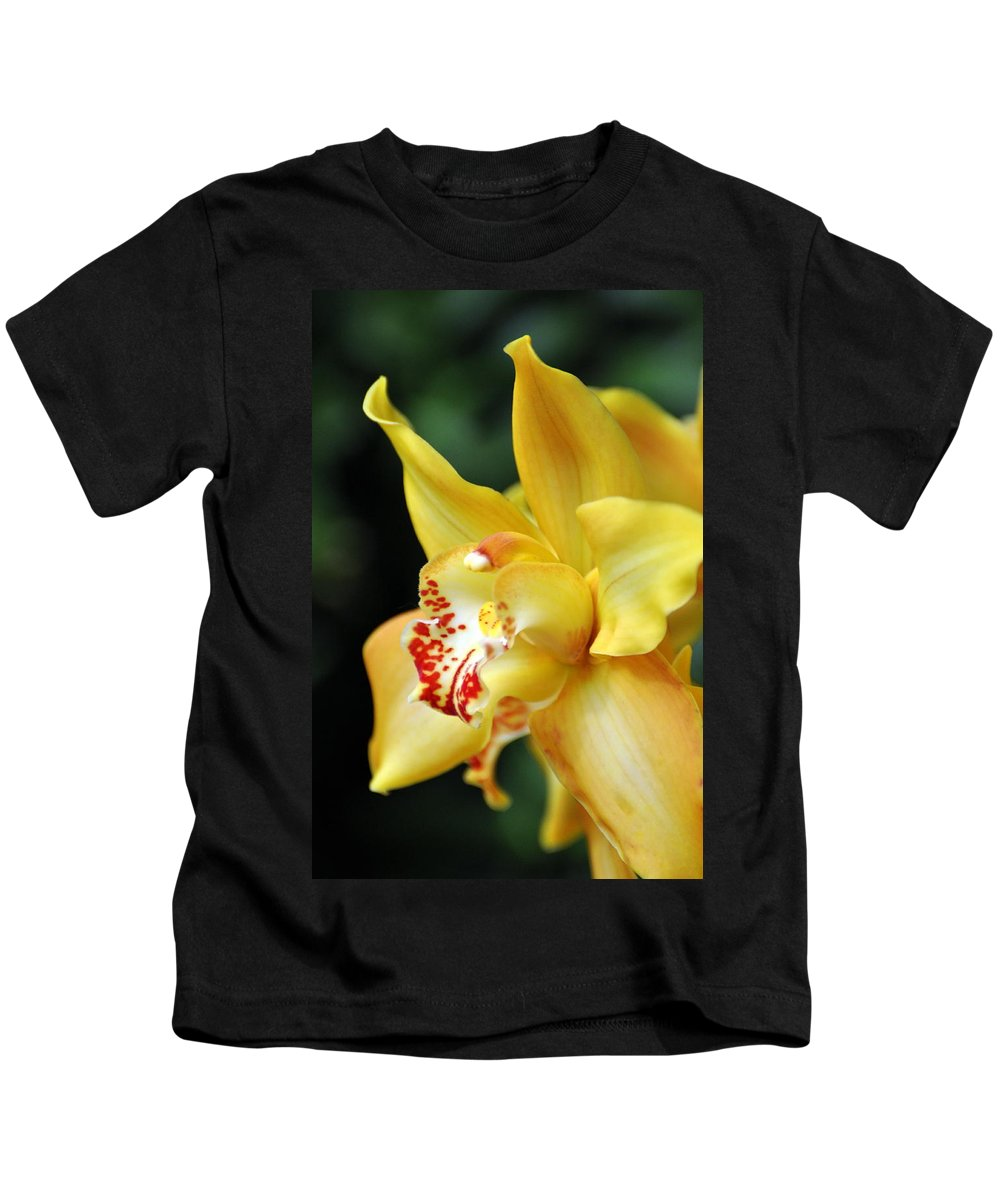 Orchid Kids T-Shirt featuring the photograph Orchid 24 by Marty Koch