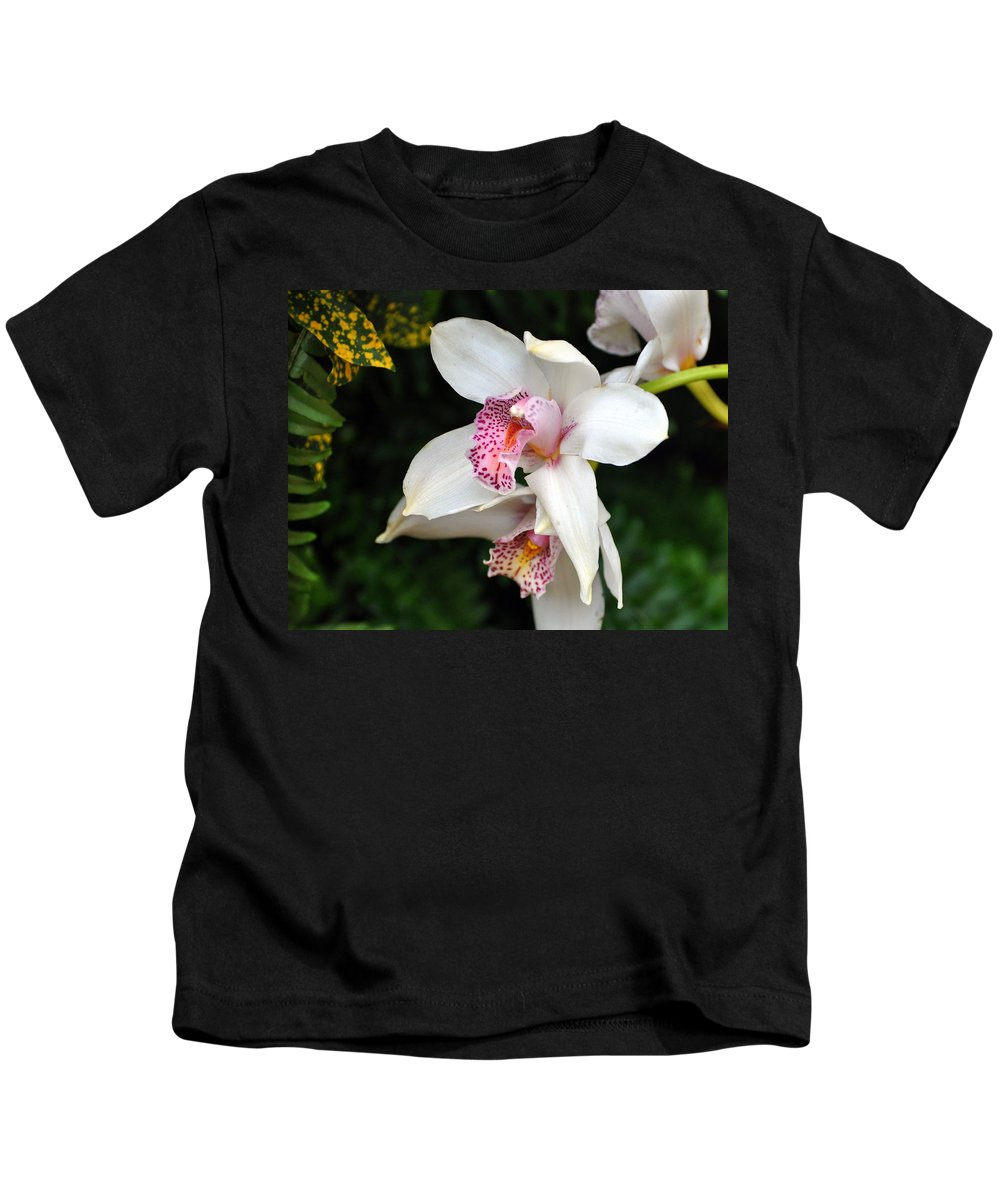 Flower Kids T-Shirt featuring the photograph Orchid 29 by Marty Koch
