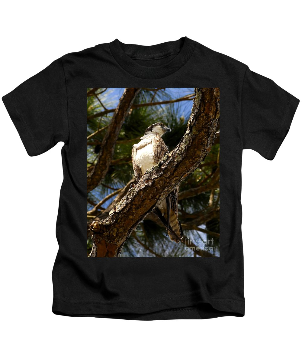 Osprey Kids T-Shirt featuring the photograph Osprey Hunting by David Lee Thompson