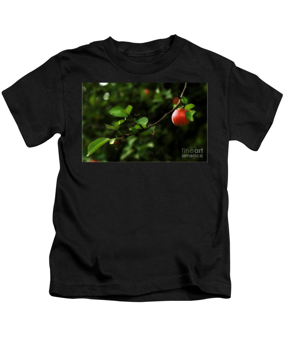Adam And Eve Kids T-Shirt featuring the photograph Out On A Limb A Tempting Photograph Of A Tasty Ripe Red Apple On A Tree by Angela Rath