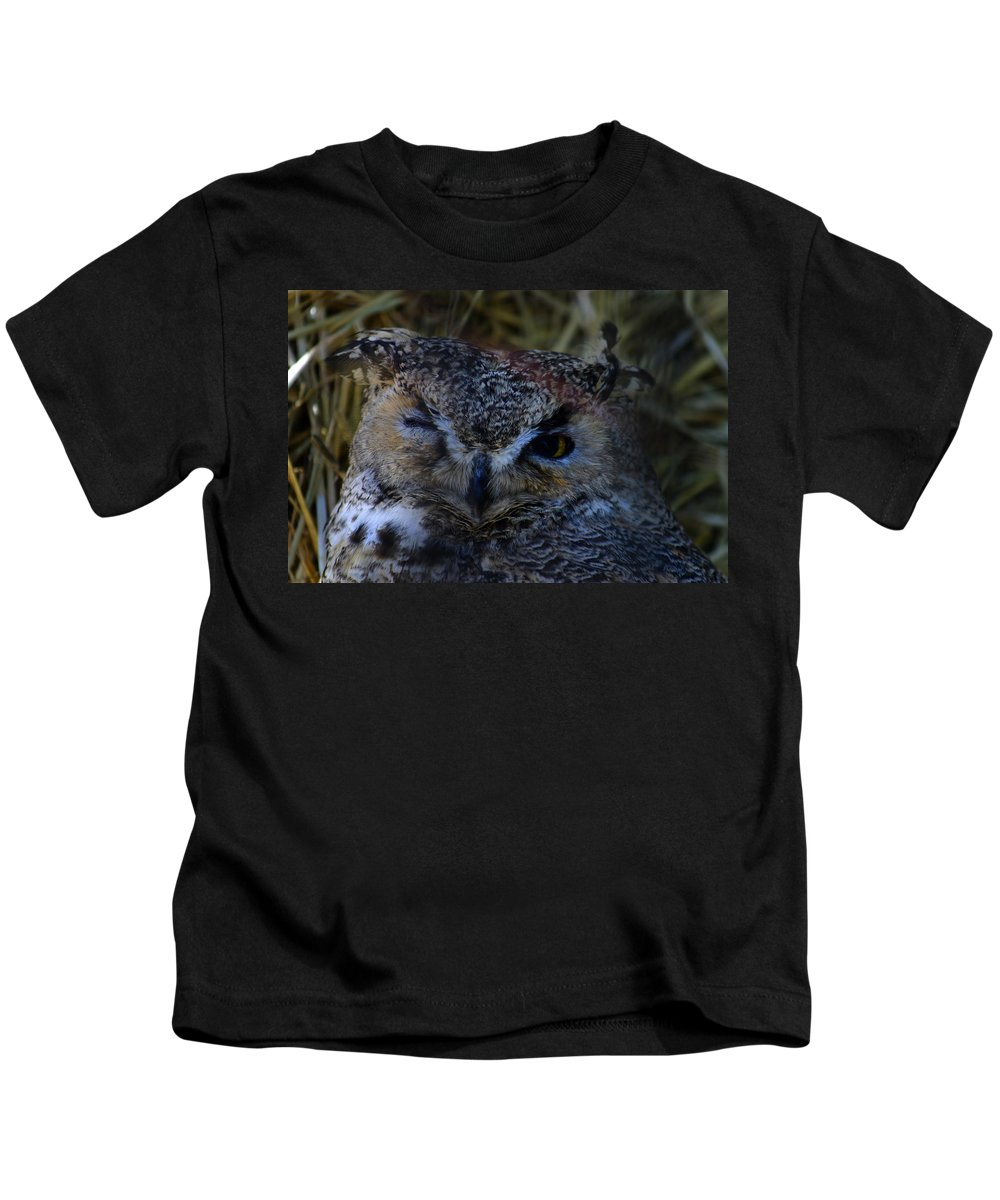 Owl Kids T-Shirt featuring the photograph Owl by Anthony Jones