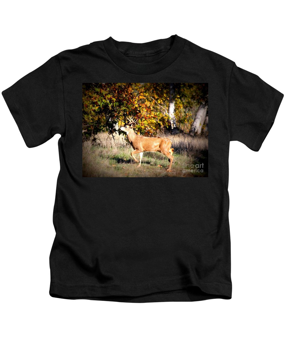 Animal Kids T-Shirt featuring the photograph Passing Buck In Autumn Field by Carol Groenen