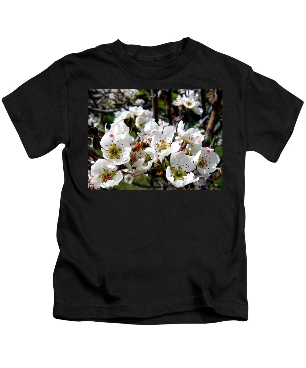 Blossoms Kids T-Shirt featuring the photograph Pear Blossoms And Bee by Will Borden