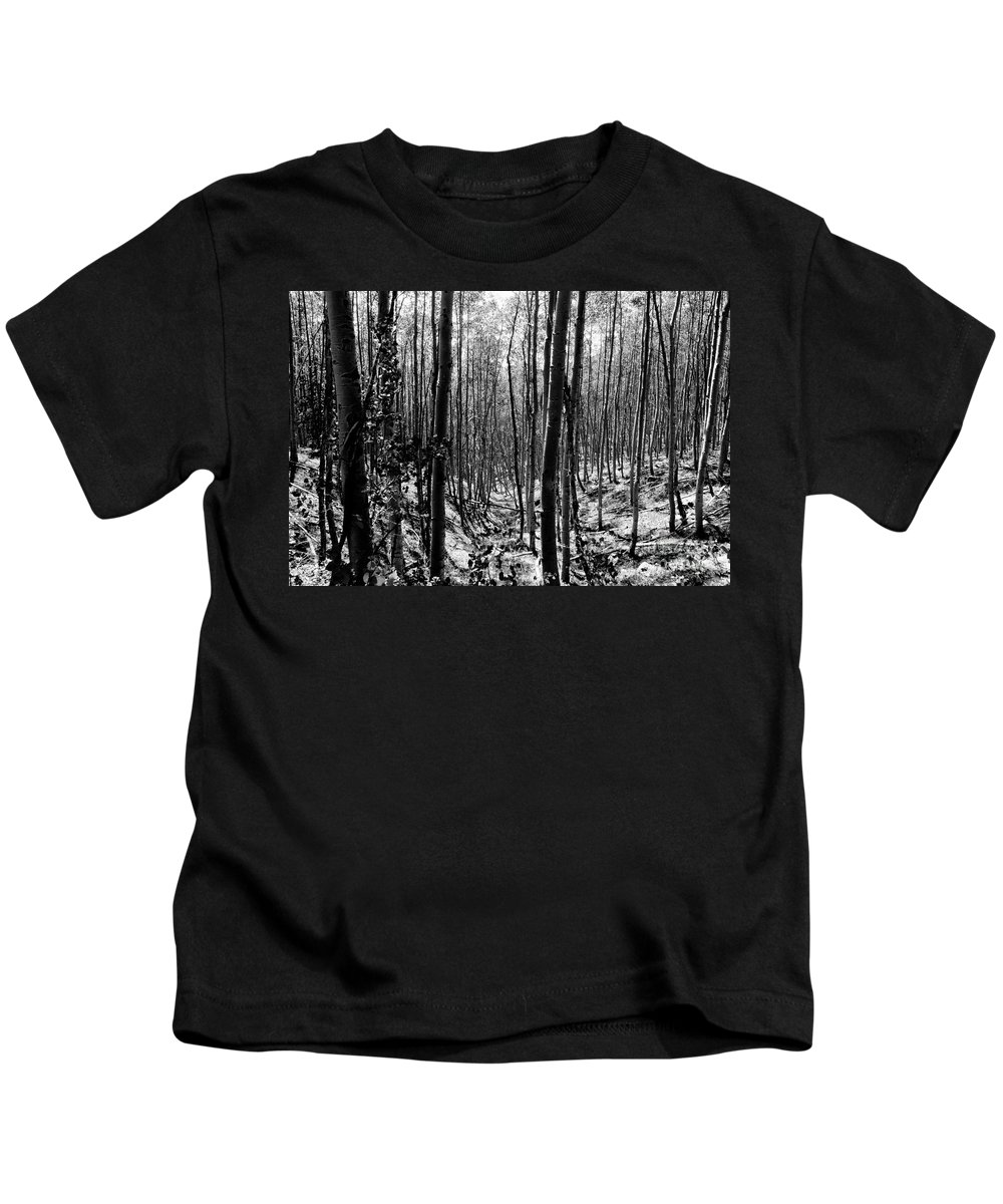 Pecos National Forest Kids T-Shirt featuring the photograph Pecos Wilderness by David Lee Thompson