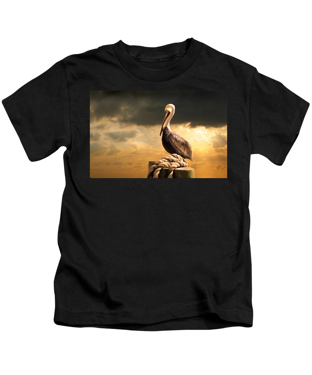 Pelican Kids T-Shirt featuring the photograph Pelican After A Storm by Mal Bray