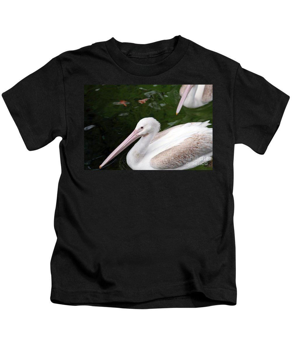 Pelican Kids T-Shirt featuring the photograph Pelican by Amanda Barcon